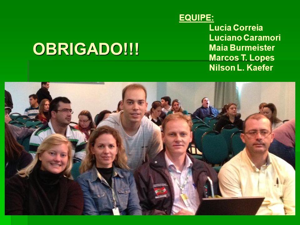 OBRIGADO!!! EQUIPE: Lucia Correia Luciano Caramori Maia Burmeister