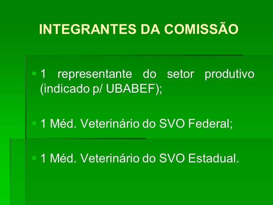 INTEGRANTES DA COMISSÃO