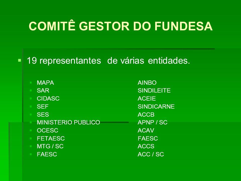 COMITÊ GESTOR DO FUNDESA