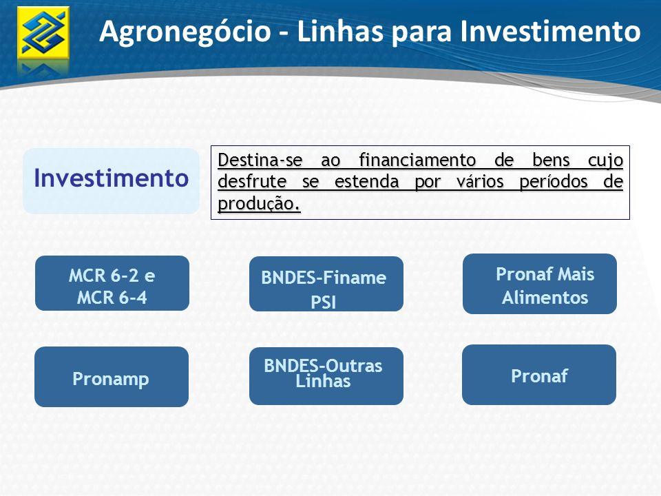 Agronegócio - Linhas para Investimento