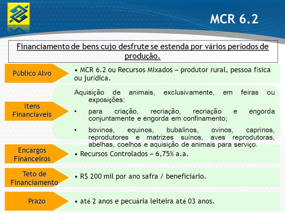 MCR 6.2 Financiamento de bens cujo desfrute se estenda por vários períodos de produção.
