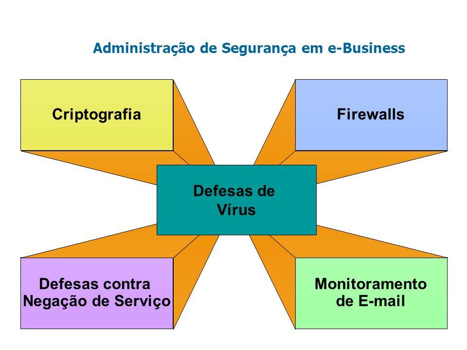 Criptografia Defesas contra Negação de Serviço Firewalls Monitoramento