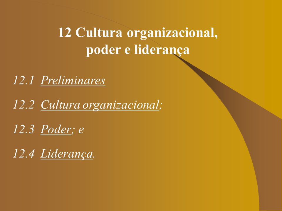 12 Cultura organizacional,