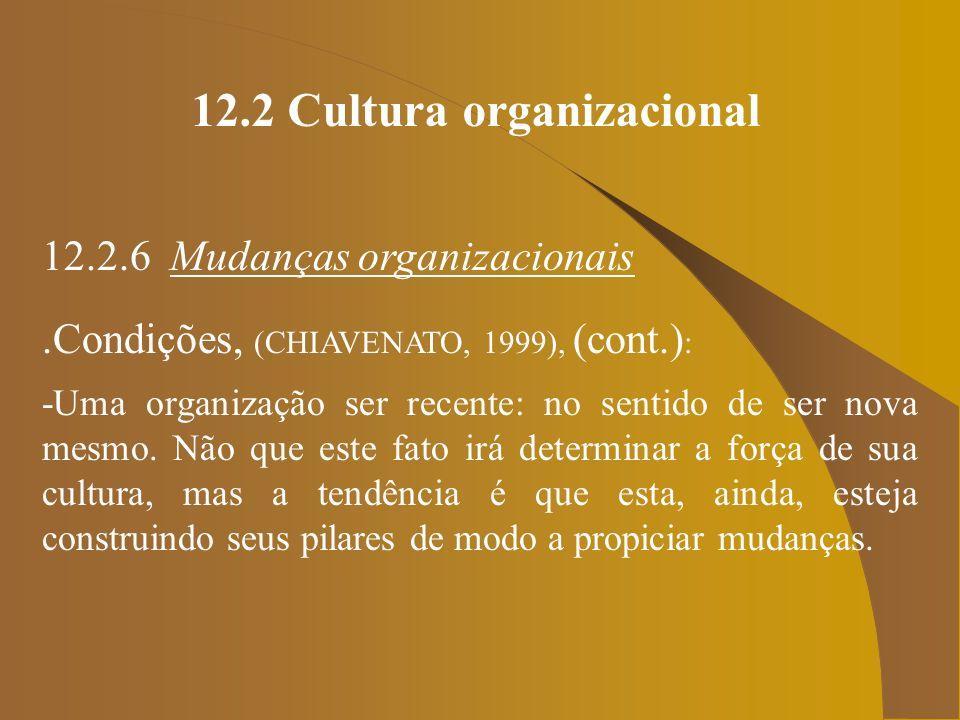 12.2 Cultura organizacional
