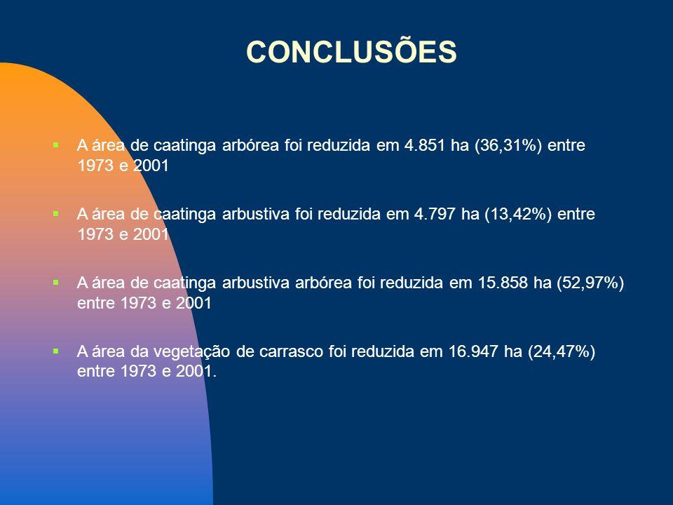 CONCLUSÕES A área de caatinga arbórea foi reduzida em 4.851 ha (36,31%) entre 1973 e 2001.