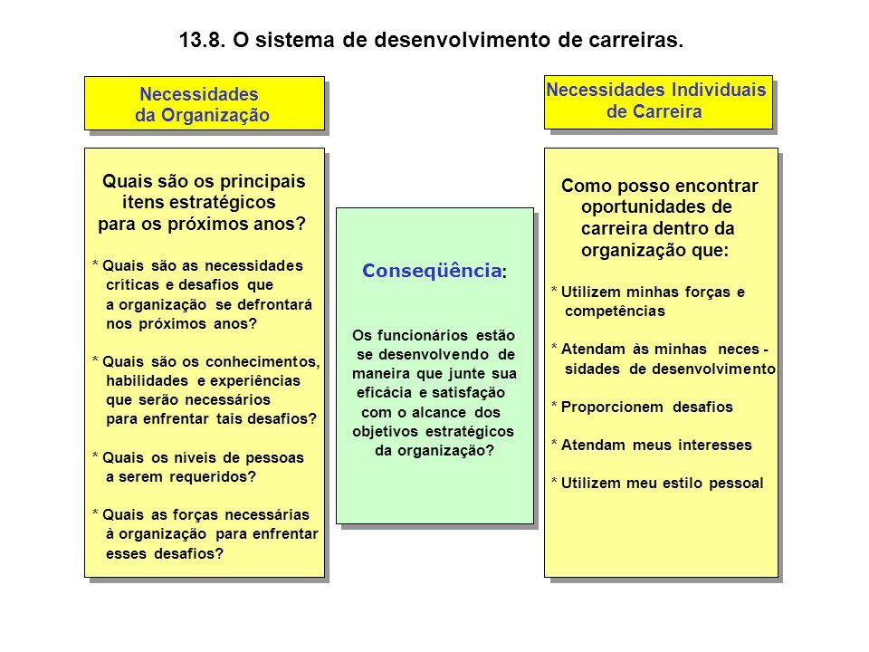 13.8. O sistema de desenvolvimento de carreiras.