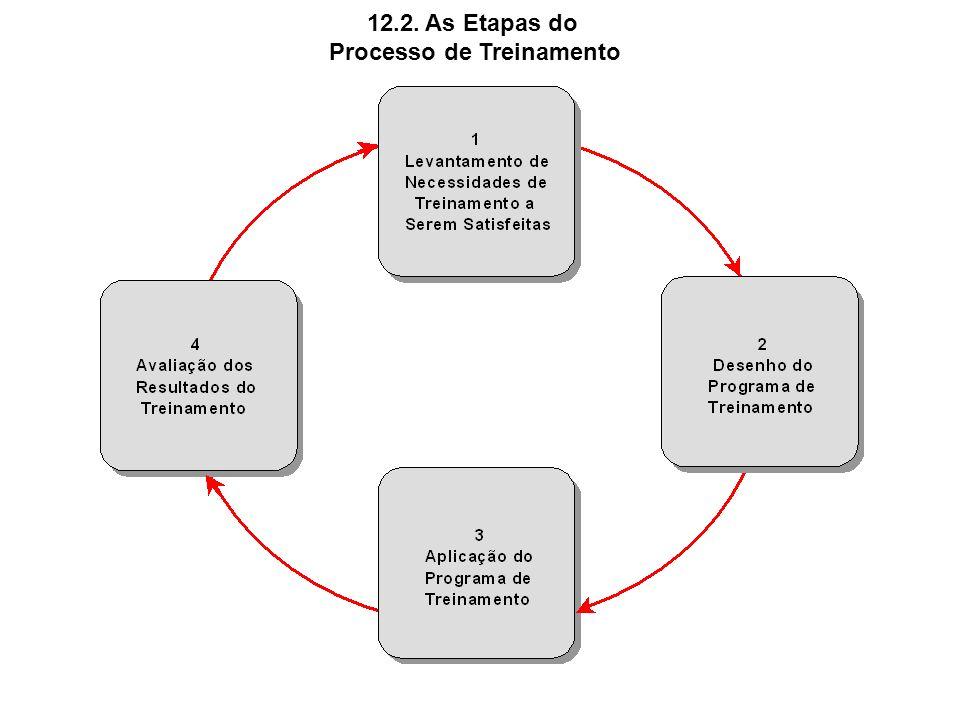 12.2. As Etapas do Processo de Treinamento
