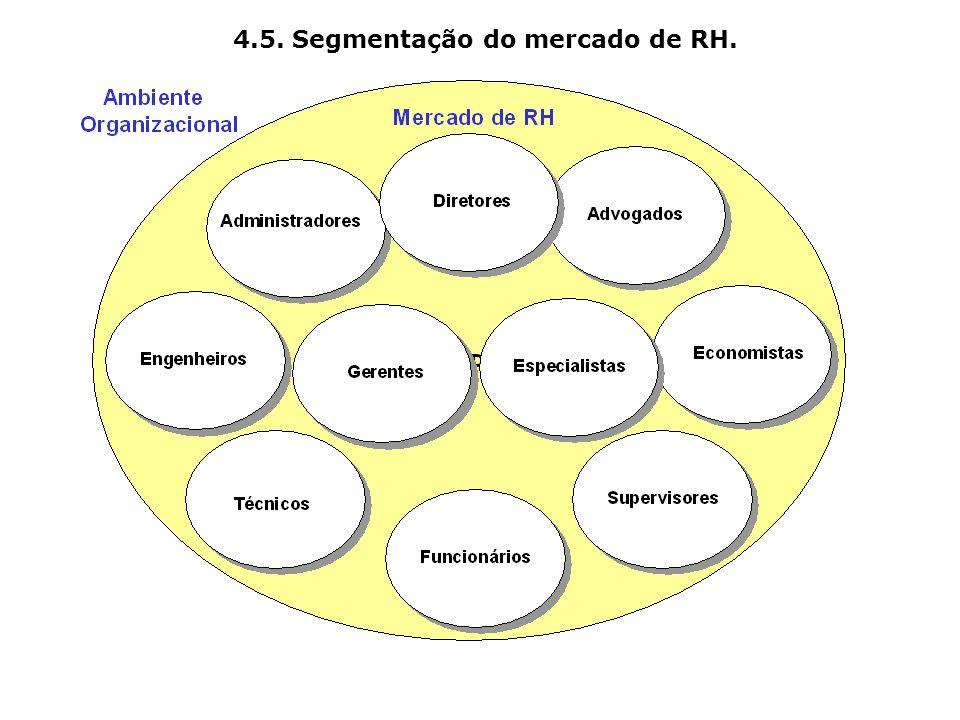 4.5. Segmentação do mercado de RH.