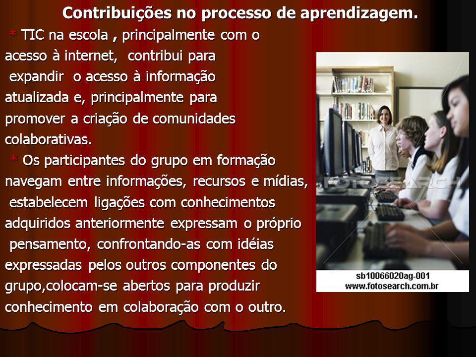 Contribuições no processo de aprendizagem.