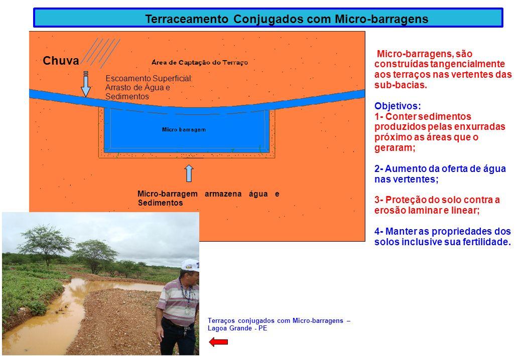 Terraceamento Conjugados com Micro-barragens