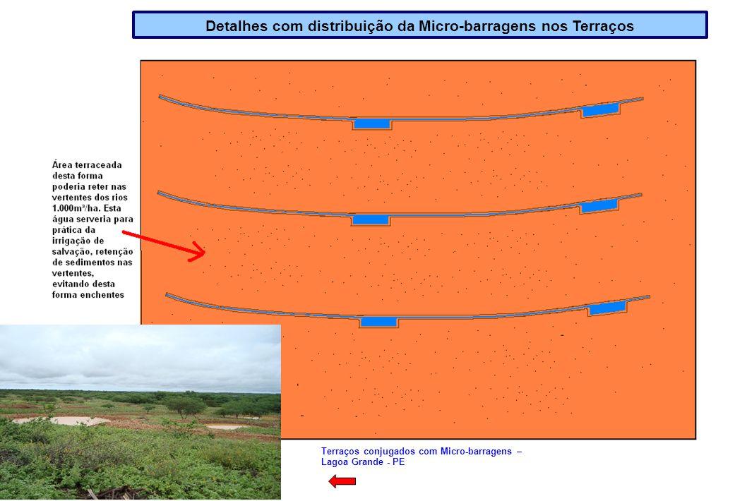 Detalhes com distribuição da Micro-barragens nos Terraços