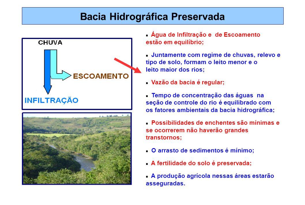 Bacia Hidrográfica Preservada