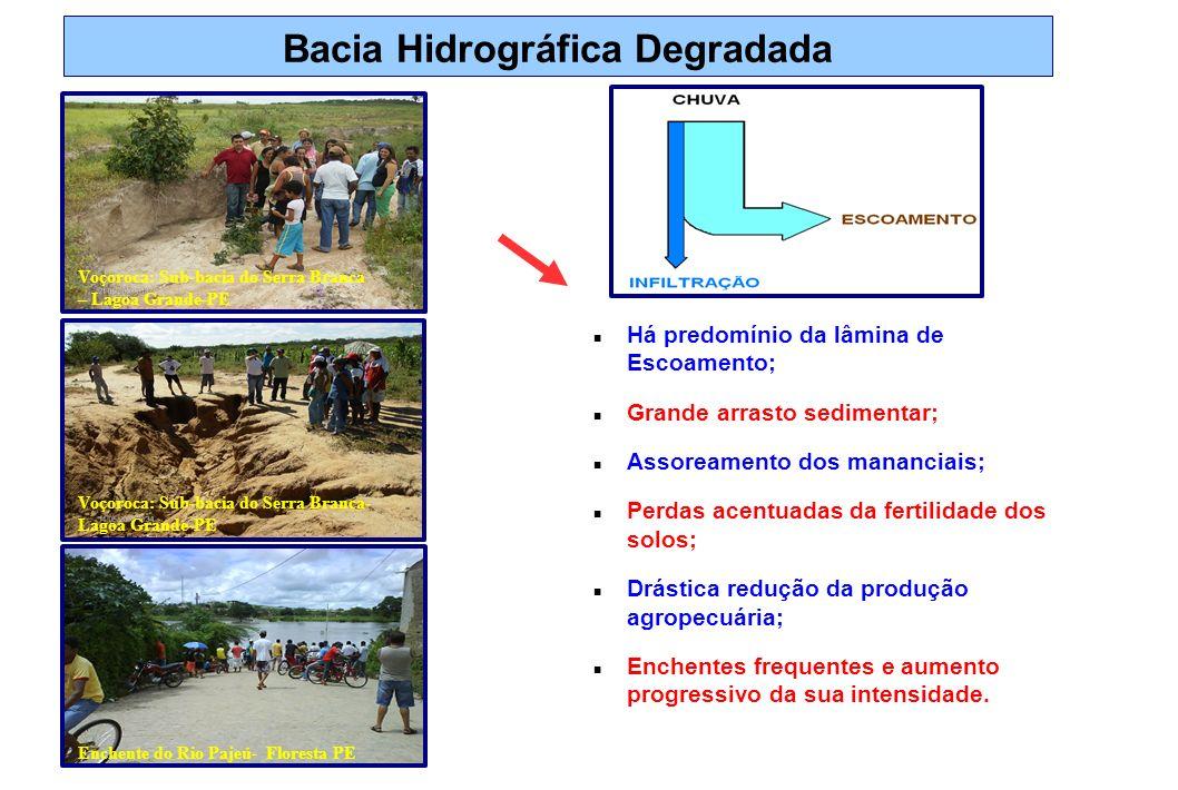 Bacia Hidrográfica Degradada