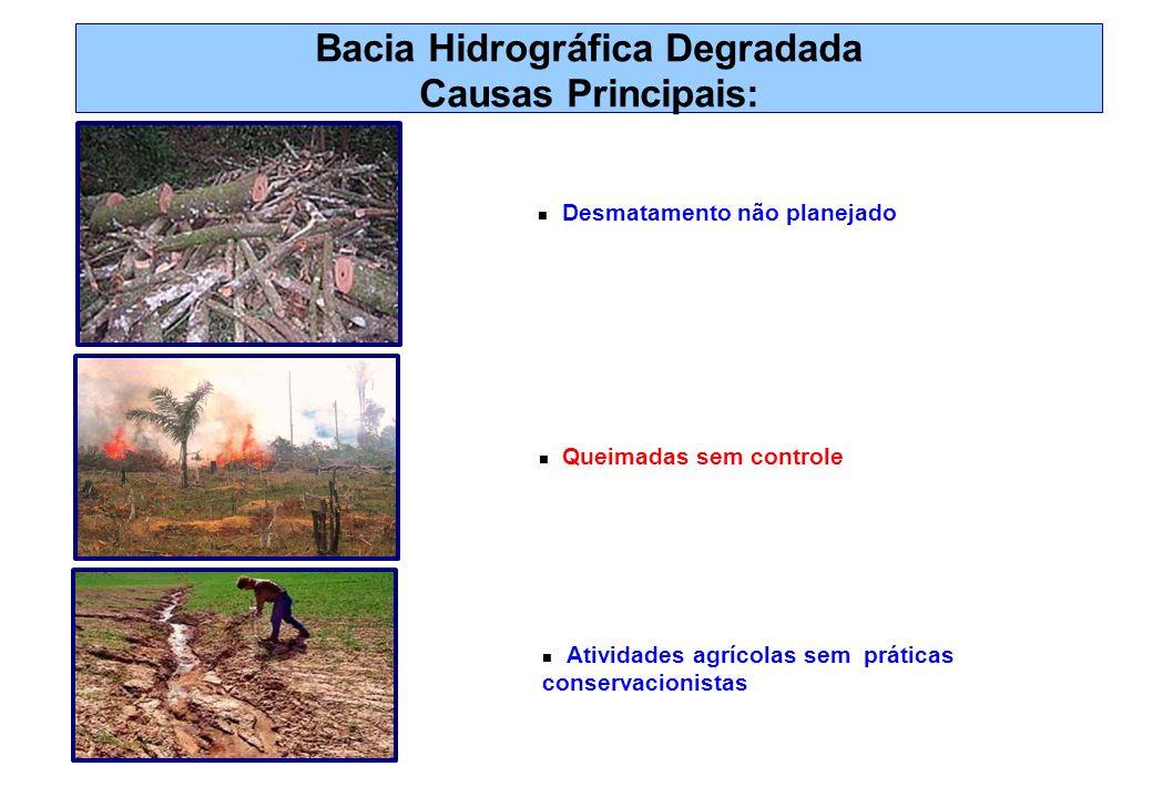 Bacia Hidrográfica Degradada Causas Principais: