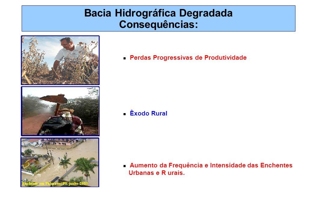 Bacia Hidrográfica Degradada Consequências: