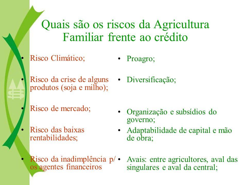 Quais são os riscos da Agricultura Familiar frente ao crédito
