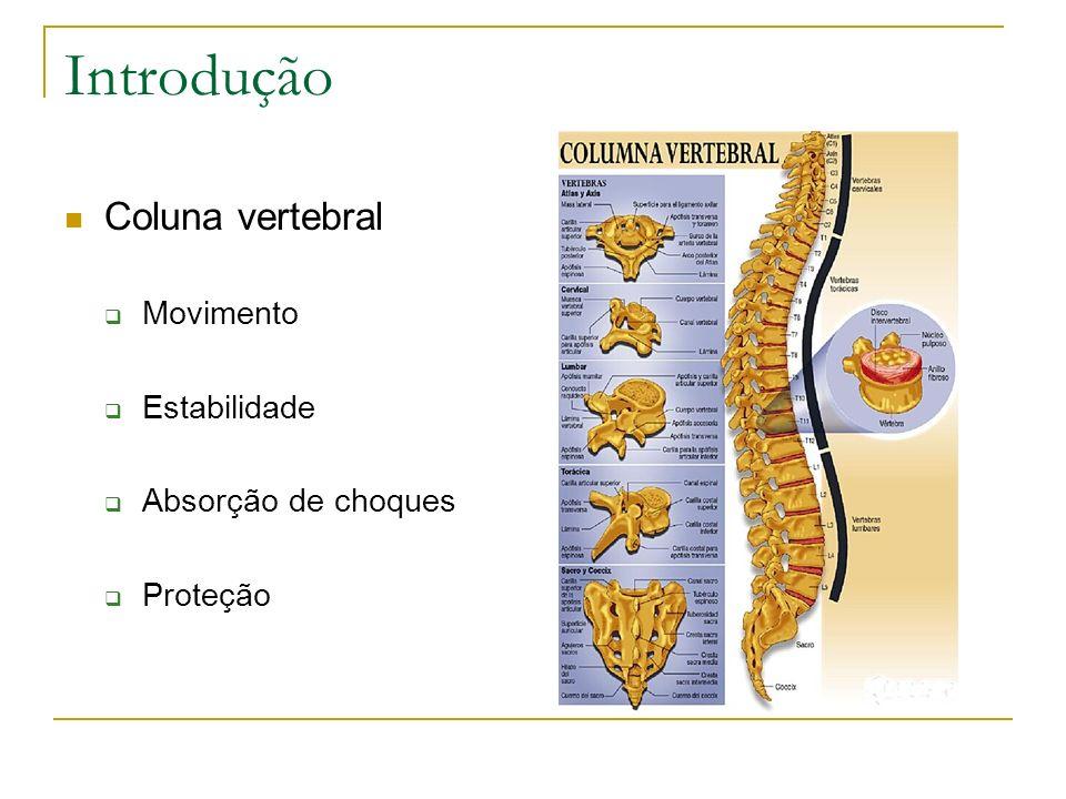 Introdução Coluna vertebral Movimento Estabilidade Absorção de choques