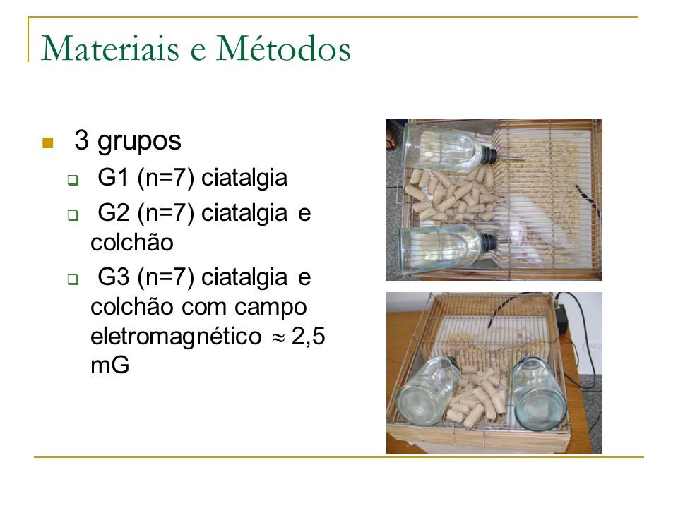 Materiais e Métodos 3 grupos G1 (n=7) ciatalgia