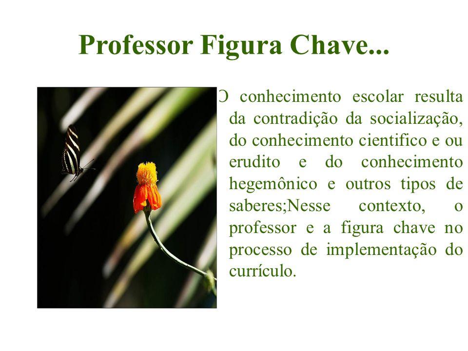 Professor Figura Chave...