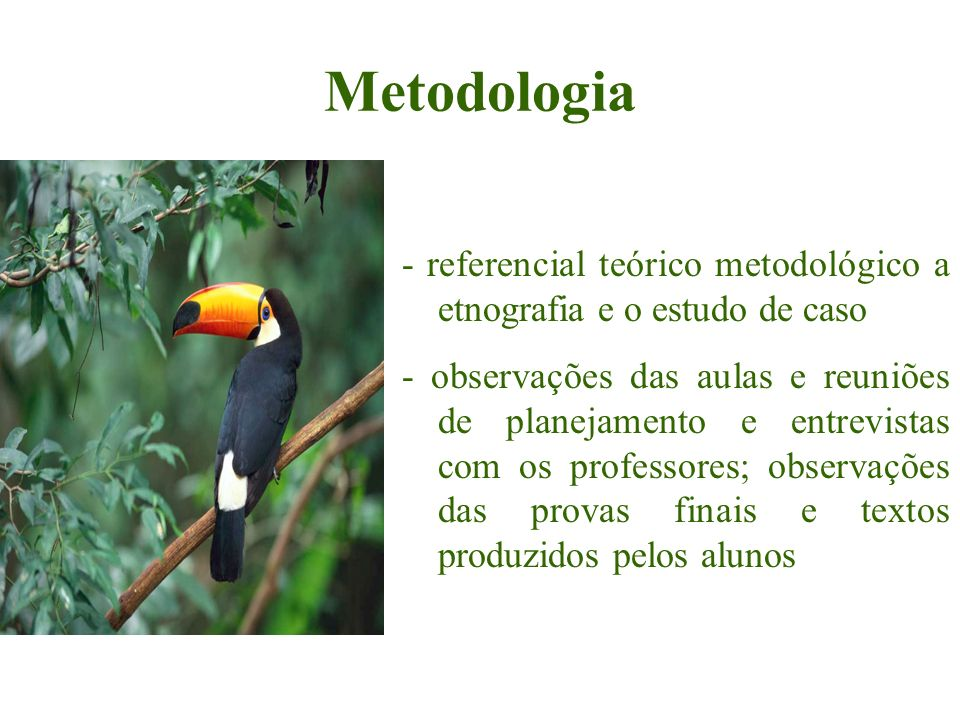 Metodologia - referencial teórico metodológico a etnografia e o estudo de caso.