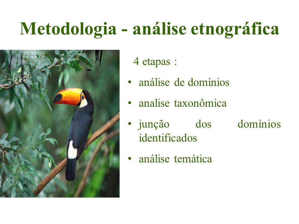 Metodologia - análise etnográfica