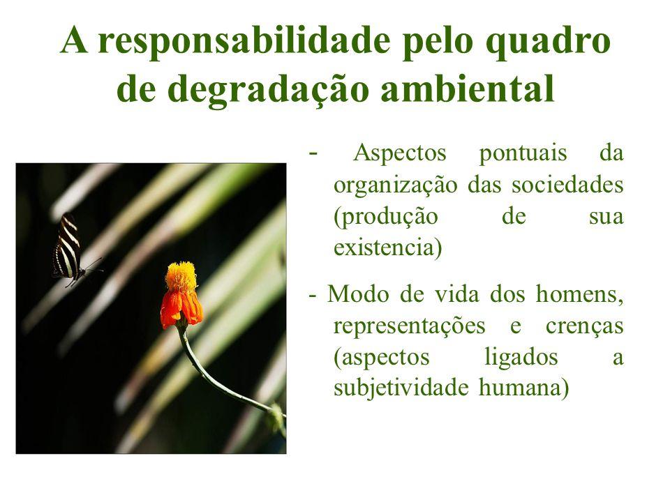 A responsabilidade pelo quadro de degradação ambiental