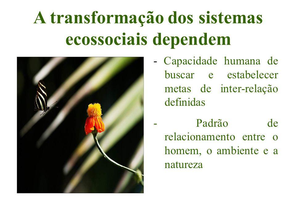 A transformação dos sistemas ecossociais dependem