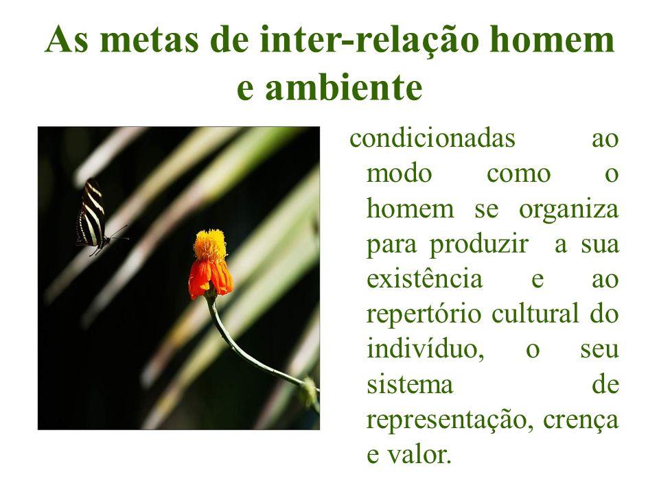 As metas de inter-relação homem e ambiente