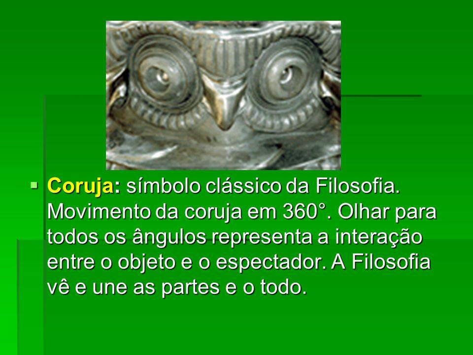 Coruja: símbolo clássico da Filosofia. Movimento da coruja em 360°