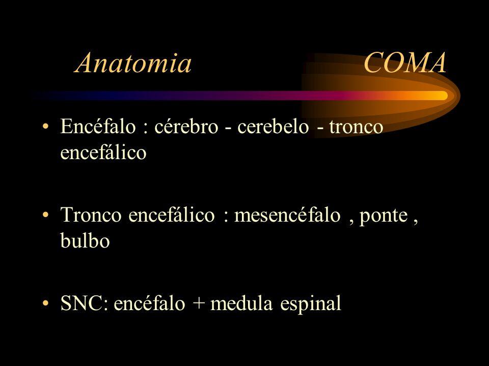 Anatomia COMA Encéfalo : cérebro - cerebelo - tronco encefálico