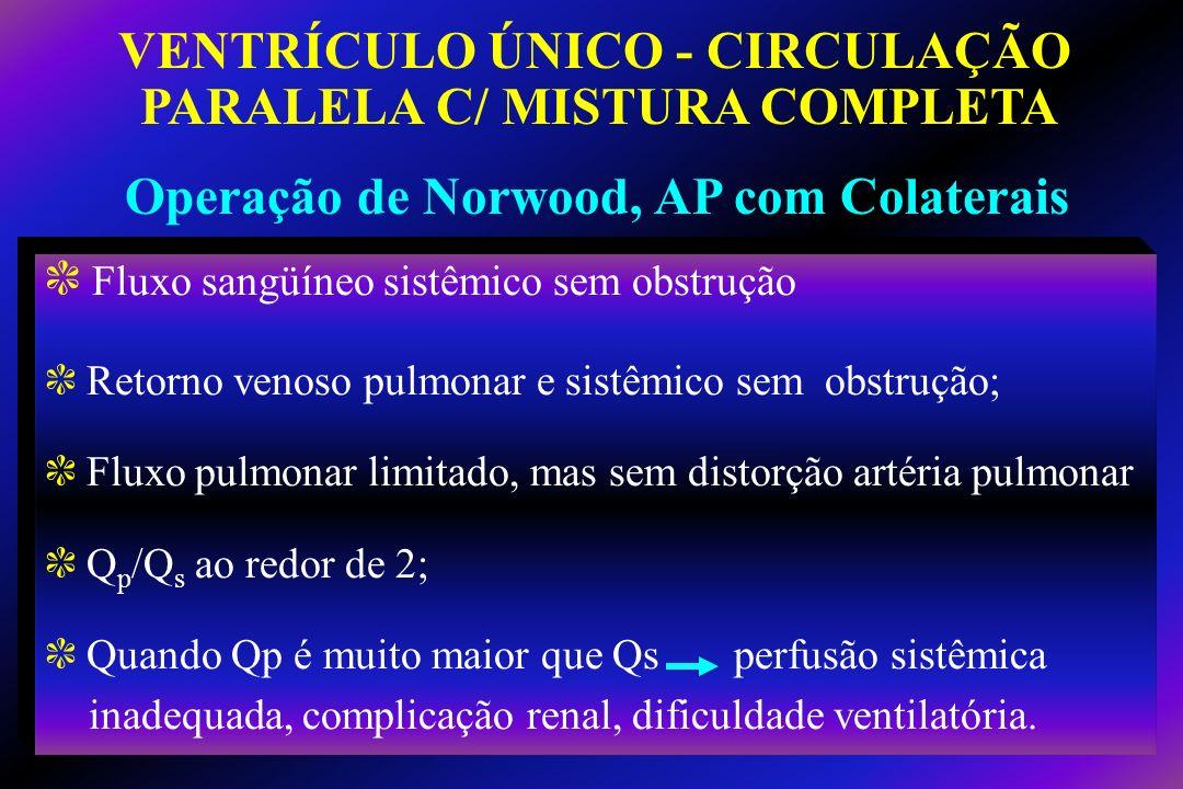 VENTRÍCULO ÚNICO - CIRCULAÇÃO PARALELA C/ MISTURA COMPLETA