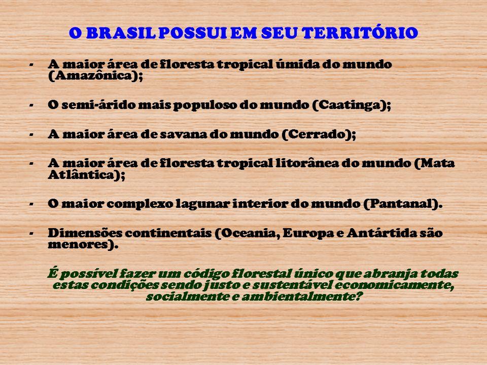 O BRASIL POSSUI EM SEU TERRITÓRIO