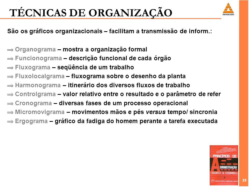 TÉCNICAS DE ORGANIZAÇÃO