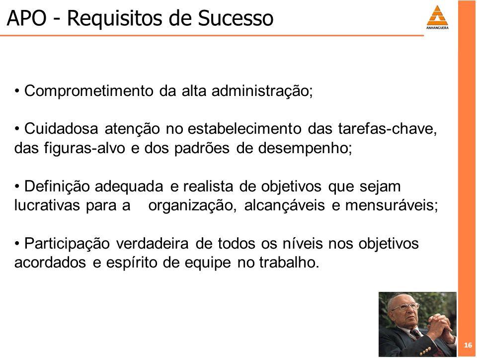 APO - Requisitos de Sucesso