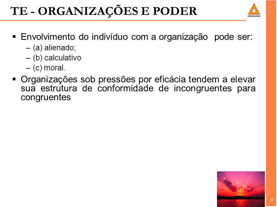 TE - ORGANIZAÇÕES E PODER