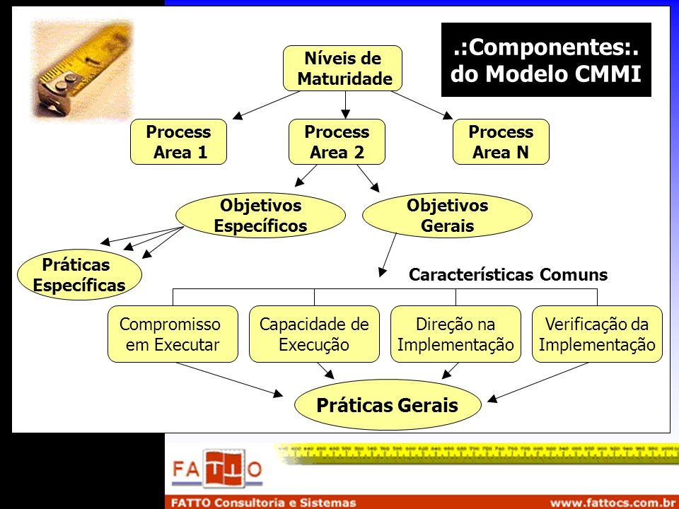 .:Componentes:. do Modelo CMMI