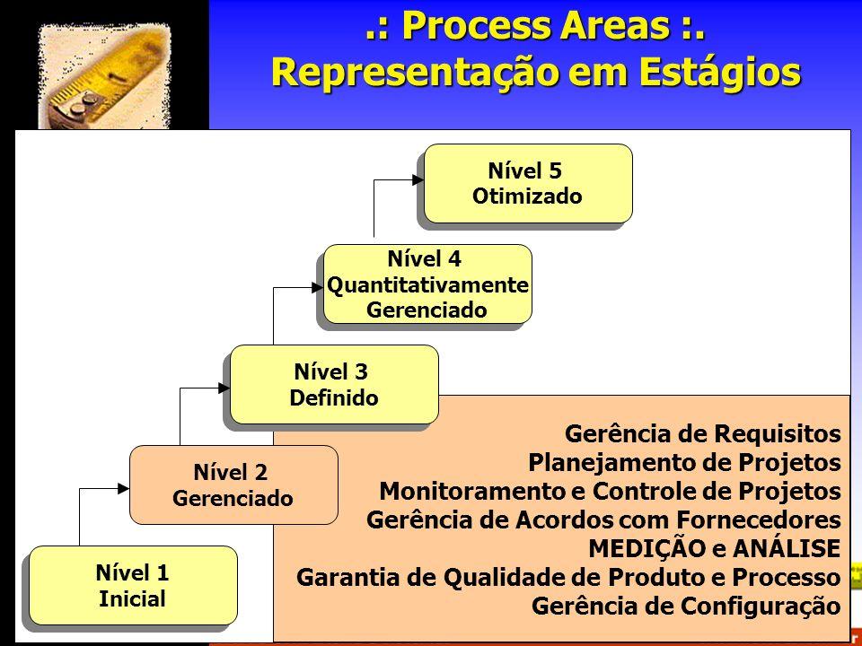 .: Process Areas :. Representação em Estágios
