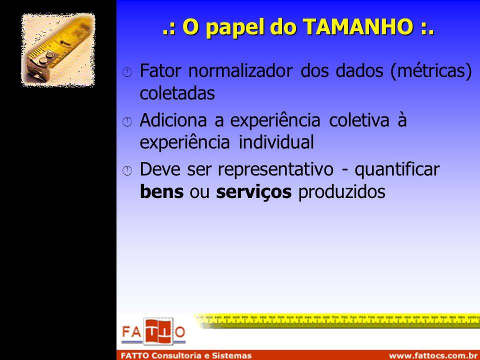 .: O papel do TAMANHO :. Fator normalizador dos dados (métricas) coletadas. Adiciona a experiência coletiva à experiência individual.