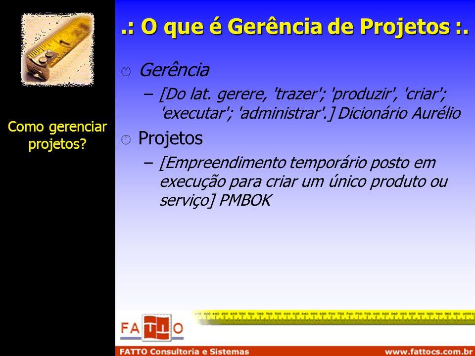 .: O que é Gerência de Projetos :.