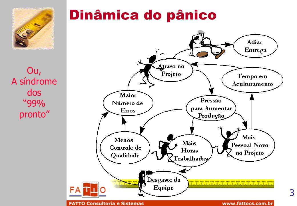 Dinâmica do pânico Ou, A síndrome dos 99% pronto