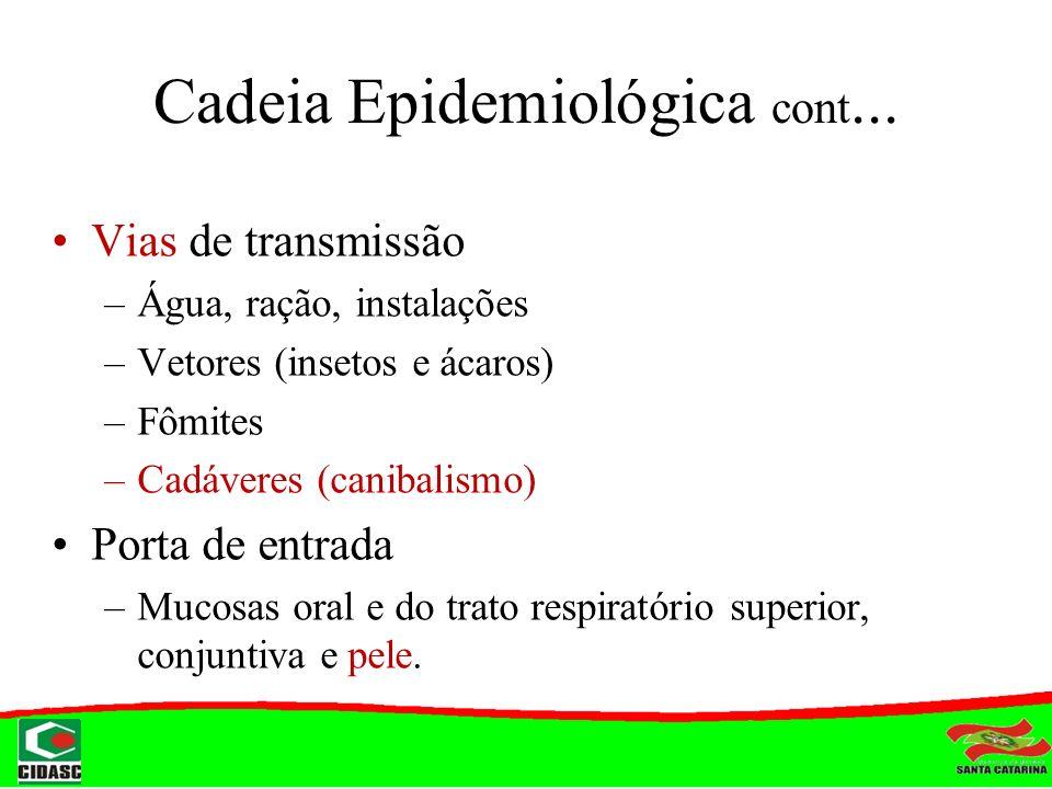 Cadeia Epidemiológica cont...