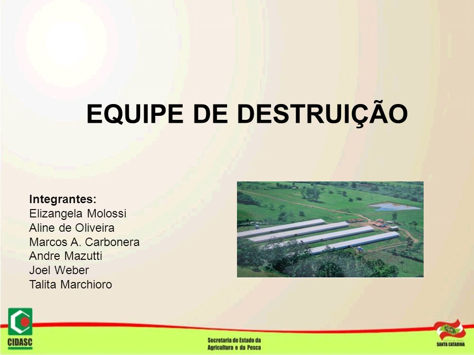 EQUIPE DE DESTRUIÇÃO Integrantes: Elizangela Molossi. Aline de Oliveira. Marcos A. Carbonera. Andre Mazutti.