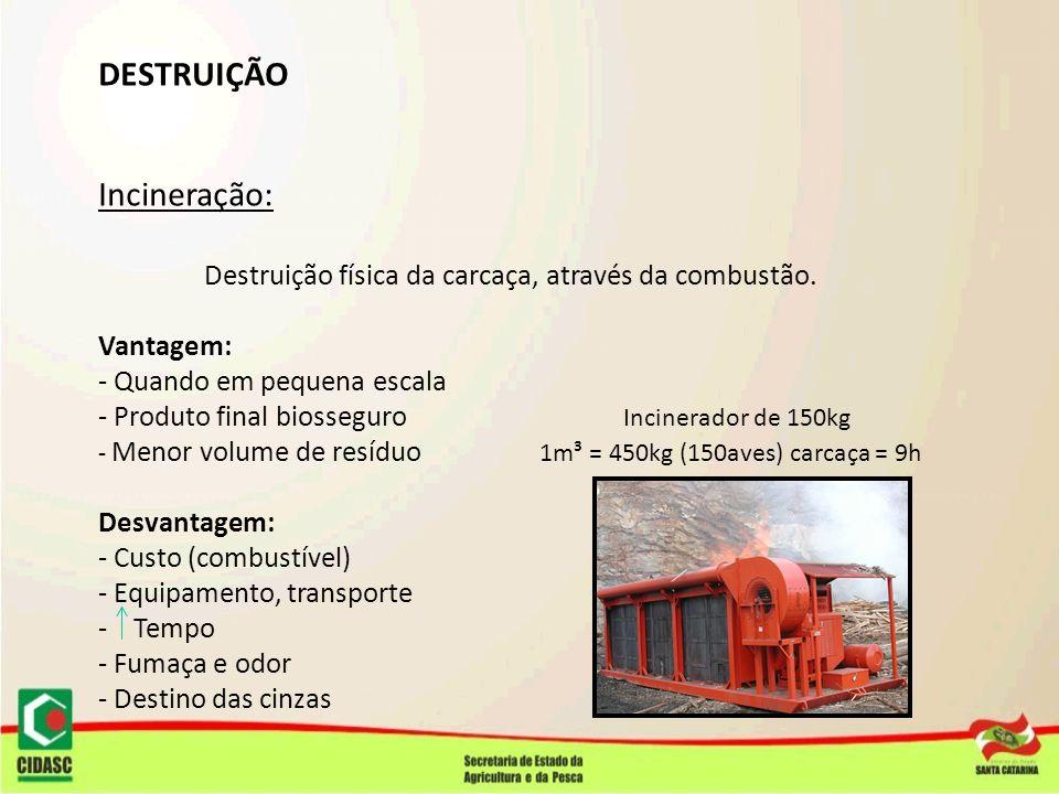 DESTRUIÇÃO Incineração: