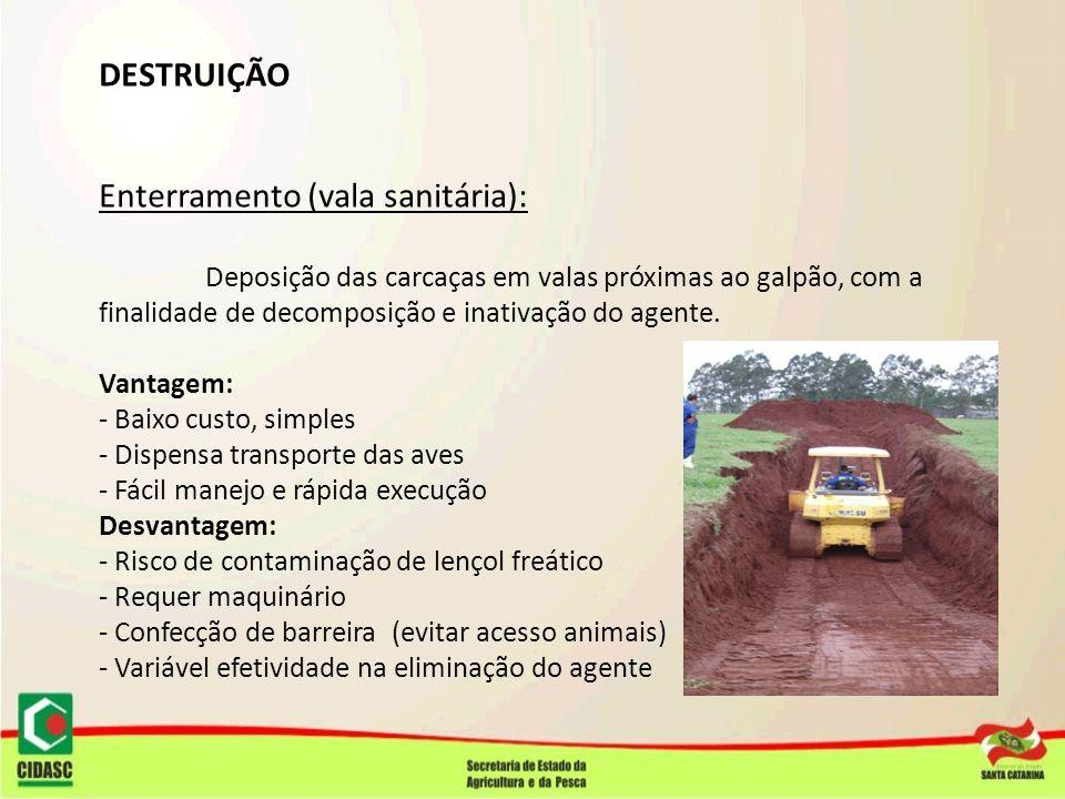 Enterramento (vala sanitária):