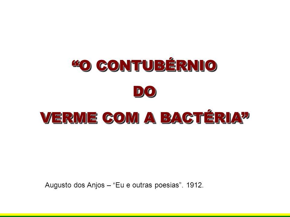 O CONTUBÉRNIO DO VERME COM A BACTÉRIA