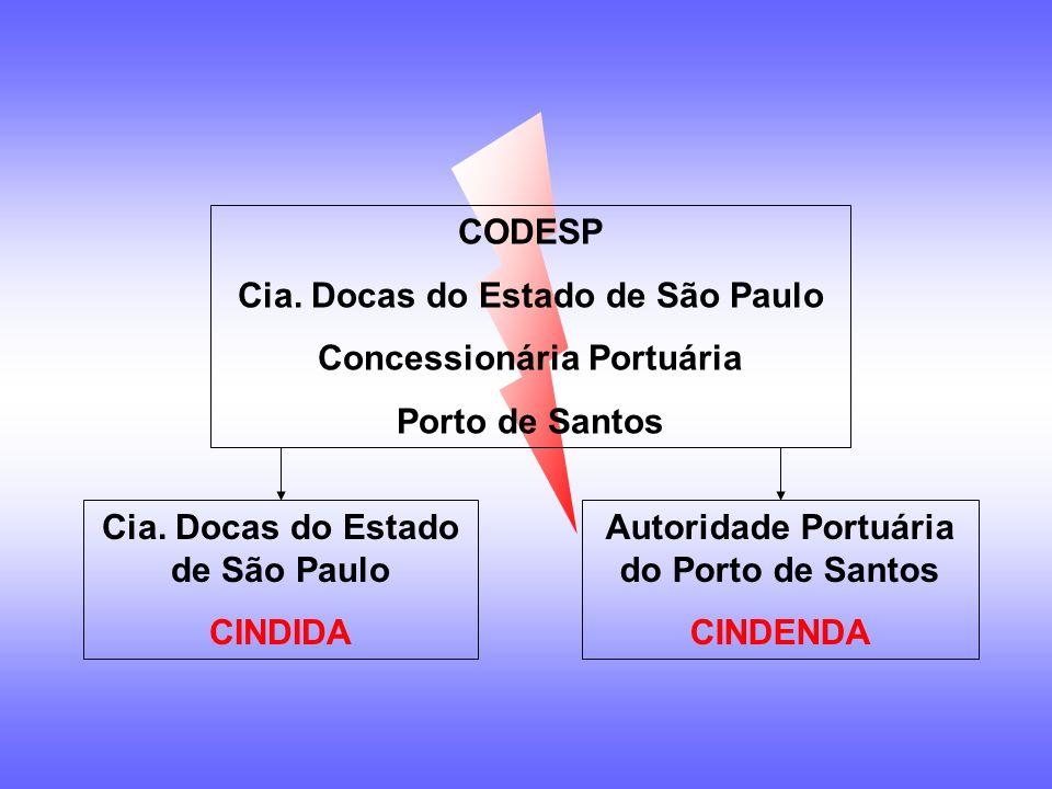 Cia. Docas do Estado de São Paulo Concessionária Portuária