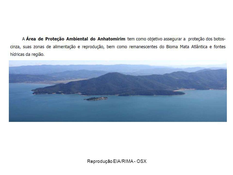 Reprodução EIA/RIMA - OSX