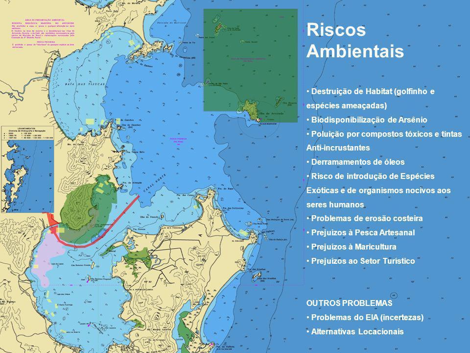 Riscos Ambientais Destruição de Habitat (golfinho e espécies ameaçadas) Biodisponibilização de Arsênio.