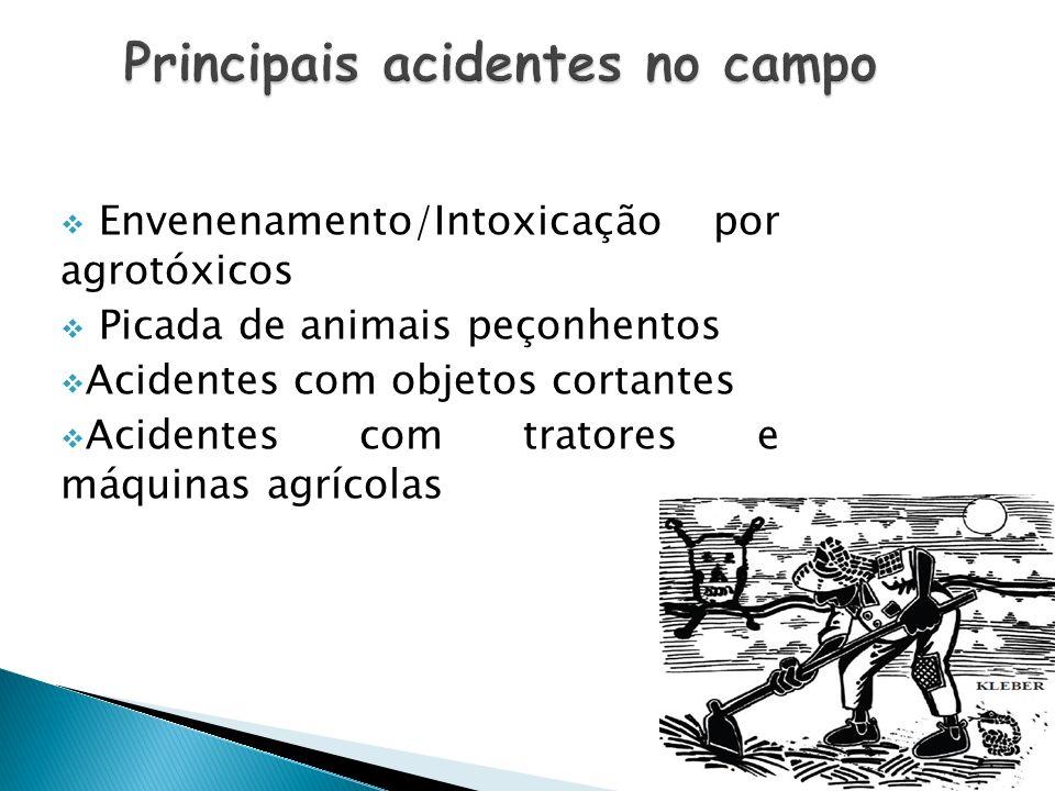 Principais acidentes no campo