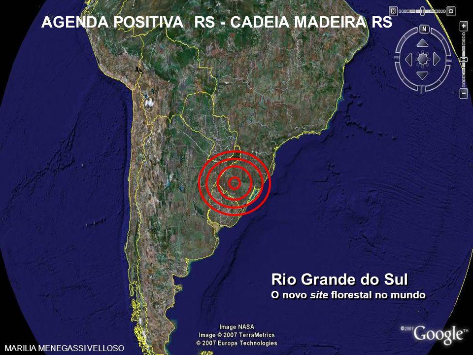 AGENDA POSITIVA RS - CADEIA MADEIRA RS
